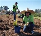 Become a Bushcare Volunteer
