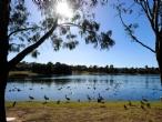 Woodcroft Lake