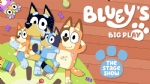 Bluey's Big Play at the Sydney Colisuem Rooty Hill